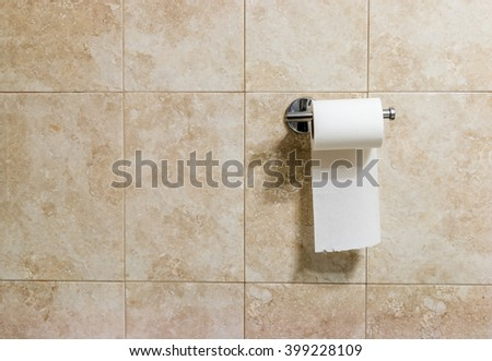 roll of white toilet paper hanging on a chrome toilet roll holde