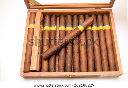 rolled cigars in the humidor isolated on white background - stock photo