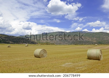 Rolled Hay on farm in Rural landscape - stock photo