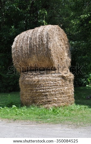 Rolled haystack - stock photo