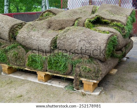 rolled pieces of sod on wooden tray in truck - stock photo