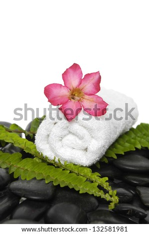 roller towel with green fern and red flower on pebbles - stock photo
