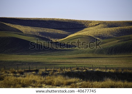 Rolling farm fields in palouse, The winter wheat has been planted. - stock photo