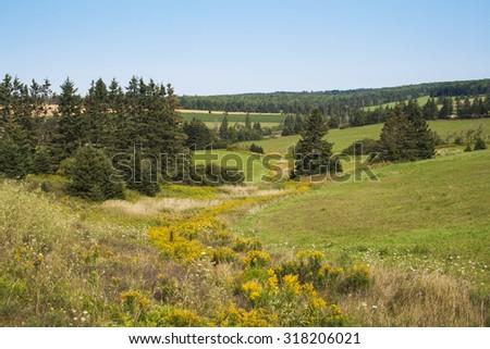Rolling farmland in Prince Edward Island, Canada. - stock photo