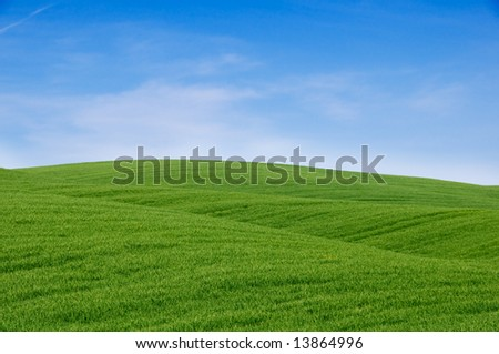 Rolling green hills and blue sky. Tuscany landscape, Italy. - stock photo