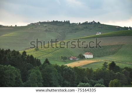 Rolling hills insummer. Ritoznoj, Slovenia - stock photo