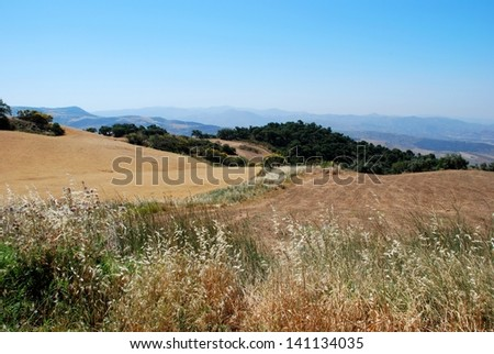 Rolling hills showing wheat crops looking South from Torcal, Near Almogia, Costa del Sol, Malaga Province, Andalucia, Spain, Western Europe. - stock photo