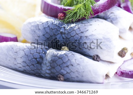Rollmops for Christmas on a plate - stock photo