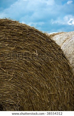 Rolls of hay after cutting with cloud background - stock photo