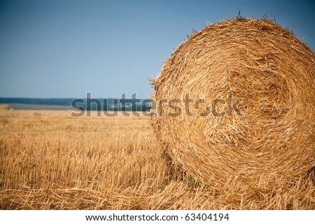 Rolls of hay in the autumn field with blue sky as background - stock photo