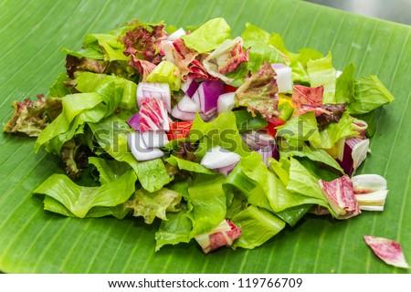 Romain, leaf lettuce with radicchio chopped and capsicum - stock photo