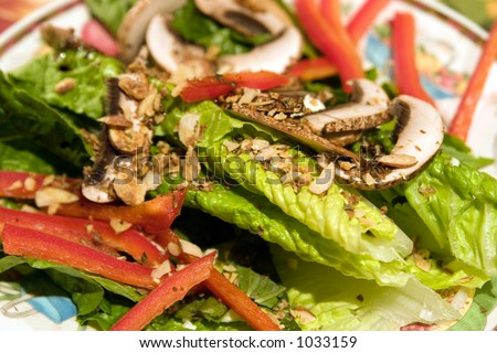 Romaine lettuce leaves garnished with mushroom, sweet red pepper and almonds.