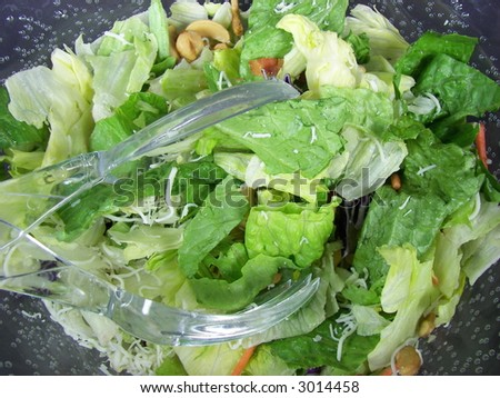Romaine Salad with cashews and plastic tong - stock photo