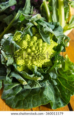 Romanesco cauliflower with its fractal shapes and Fibonacci sequences . - stock photo