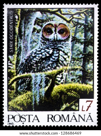 "ROMANIA - CIRCA 1992: A stamp printed in Romania shows Spotted owl (Strix occidentalis), with the same inscription, from the series ""Fauna of the Northern Region"", circa 1992 - stock photo"