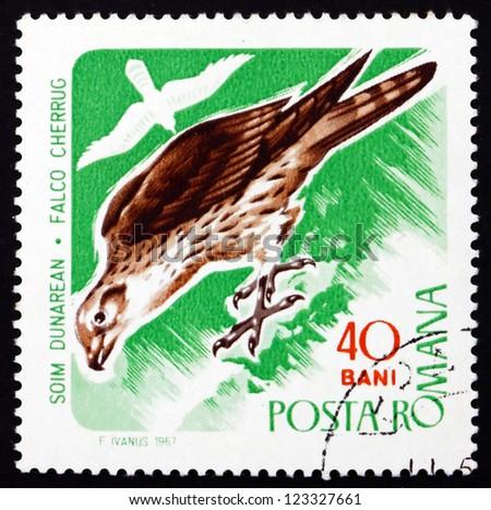 ROMANIA - CIRCA 1967: a stamp printed in the Romania shows Saker Falcon, Falco Cherrug, Bird of Prey, circa 1967 - stock photo