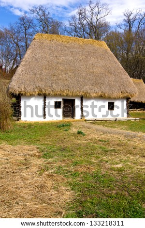 Romanian peasant house with hay roof - stock photo