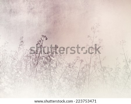 Romantic background - vintage field landscape - stock photo