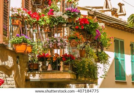 Romantic balcony flowery gardening, Spello city, Umbria - Italy. - stock photo