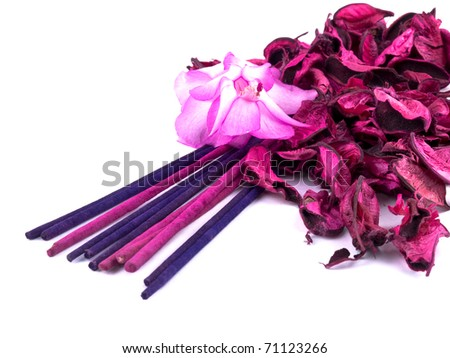 Romantic composition made from pink potpourri with incenses and christmas cactus flower on white background - stock photo