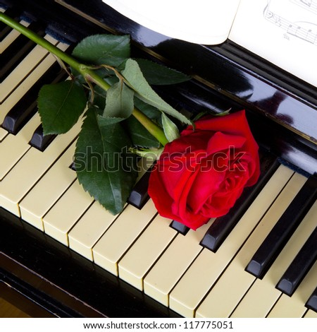 romantic concept - deep red rose on piano keys - stock photo