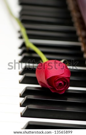 Romantic concept - red rose on piano keys