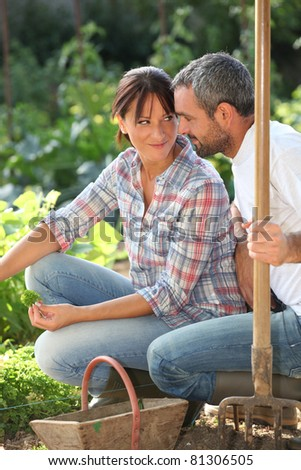 Romantic couple in an allotment - stock photo