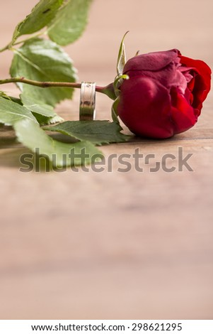 Romantic engagement ring  on a stem of single fresh red rose symbolic of love and engagement proposal with focus to the ring and copyspace in the foreground. - stock photo