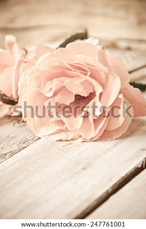 Romantic floral frame background/ Valentines day background/Roses on wooden background - stock photo