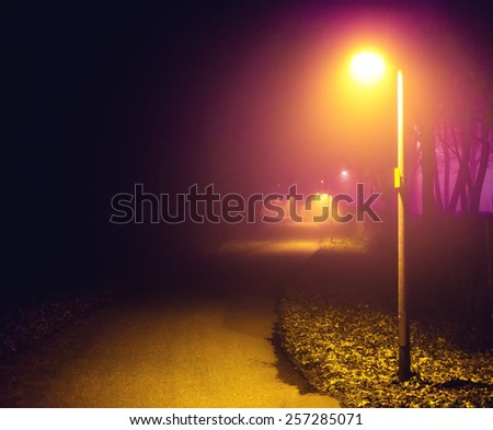 Romantic foggy night walk in a park with street lights (toned, diffused) - stock photo