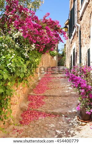 Romantic narrow street with blooming bougainvillea flowers on the island of Majorca in Spain