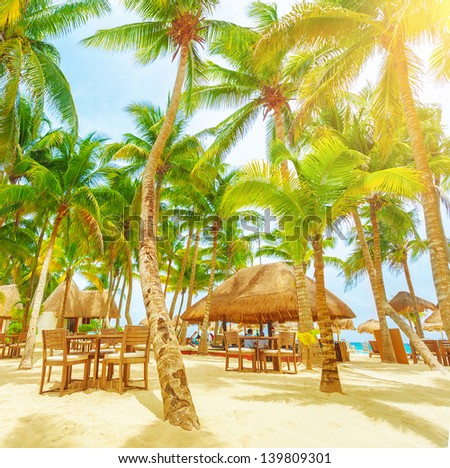 Romantic restaurant on the tropical beach, sunny day, palm trees, Playa del Carmen, North America, day spa, luxury resort, summer vacation concept - stock photo