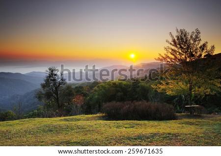 Romantic scene of sunbeam at dawn and nature  - stock photo