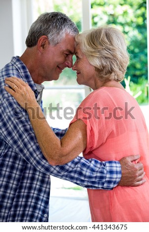 Romantic senior couple embracing at home - stock photo