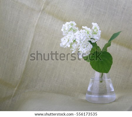 Romantic still life with flowers