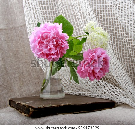 Romantic still life with flowers. Peonies in the vase