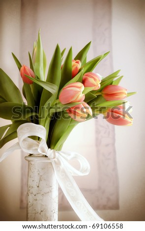 Romantic tulips - stock photo