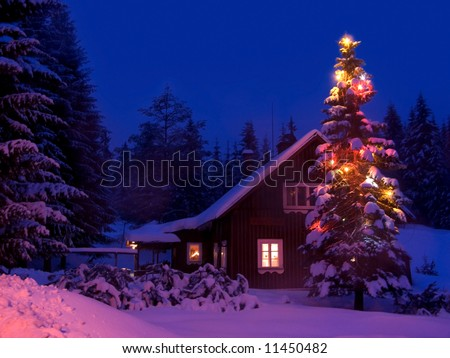 Romantic view on the snowy Christmas illuminated tree at the cottage in mountains at night.