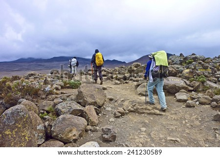 ROMBO, TANSANIA - SEP 3, 2010: people climbing the Mount Kilimanjaro in Rombo, Tansania. The Kilimanjaro is the highest mountain in Africa with 5892meters and only allowed to climb with permit. - stock photo