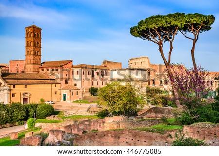 Rome, Italy. Amazing scenery with Roman Forum ruins and Colosseum, Flavian Amphiteatre. - stock photo