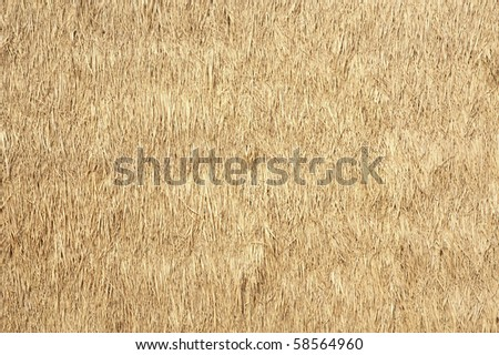 Roof hay or dry grass background