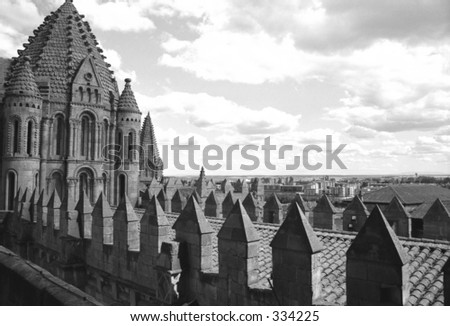 roof of cathedral in Salamanca, Spain - stock photo