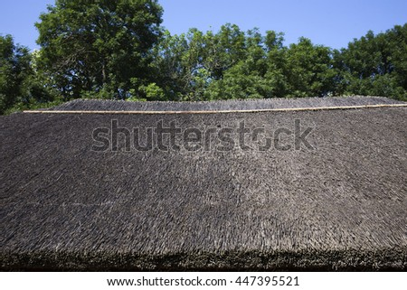 Roof of reeds. Traditional roof of reeds in the Moldovan village. - stock photo