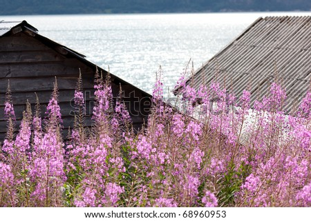 Roofs of typical country house by lake - hytte, Norway, Europe - stock photo