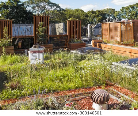 Rooftop garden in urban setting with beehive - stock photo