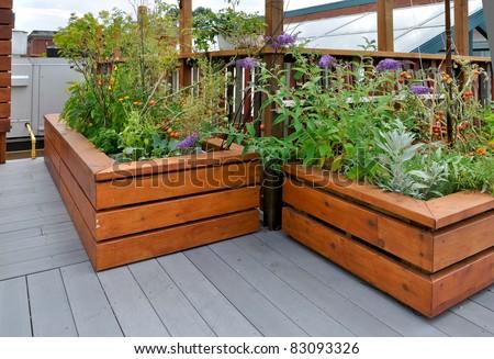 rooftop garden on urban building - stock photo