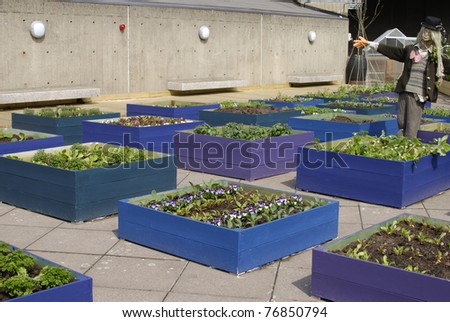 Rooftop garden with scarecrow at the South Bank Centre. Westminster. London. England. - stock photo