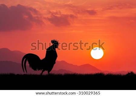 Roosters crow stand on a wind turbine. In the morning sunrise background - stock photo