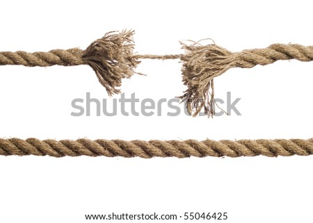 Rope on the isolated white background - stock photo