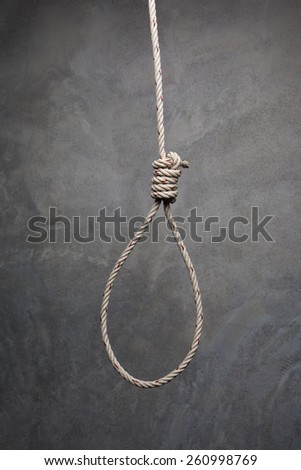 rope slipknot in concept suicide - stock photo